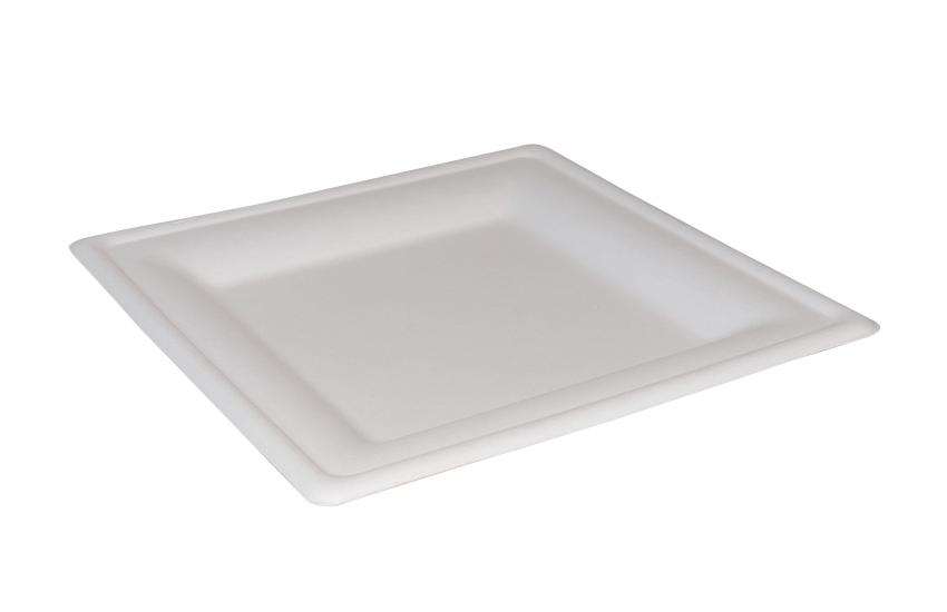 D06018 square plate 20x20cm